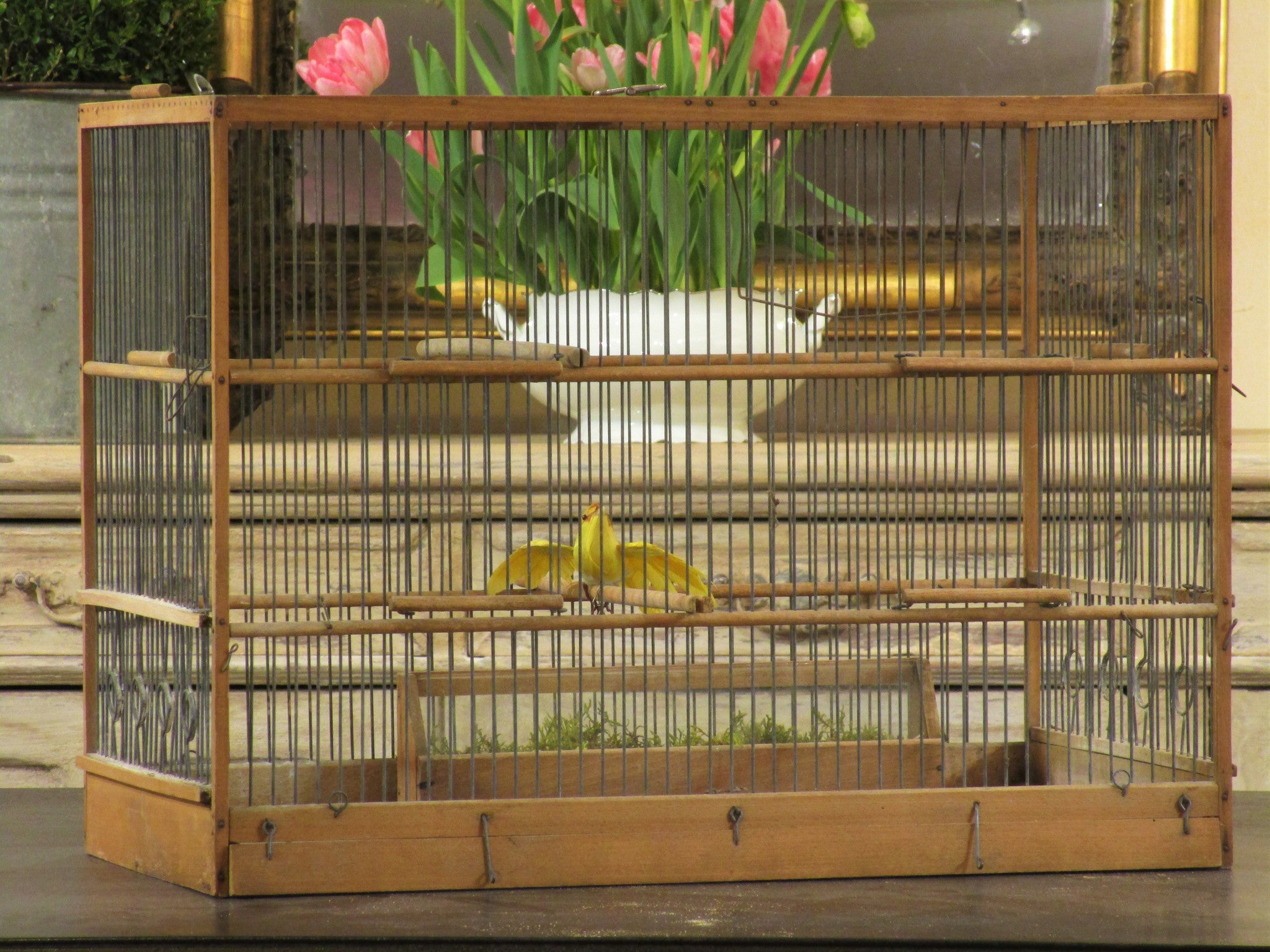 Rectangular birdcage 44