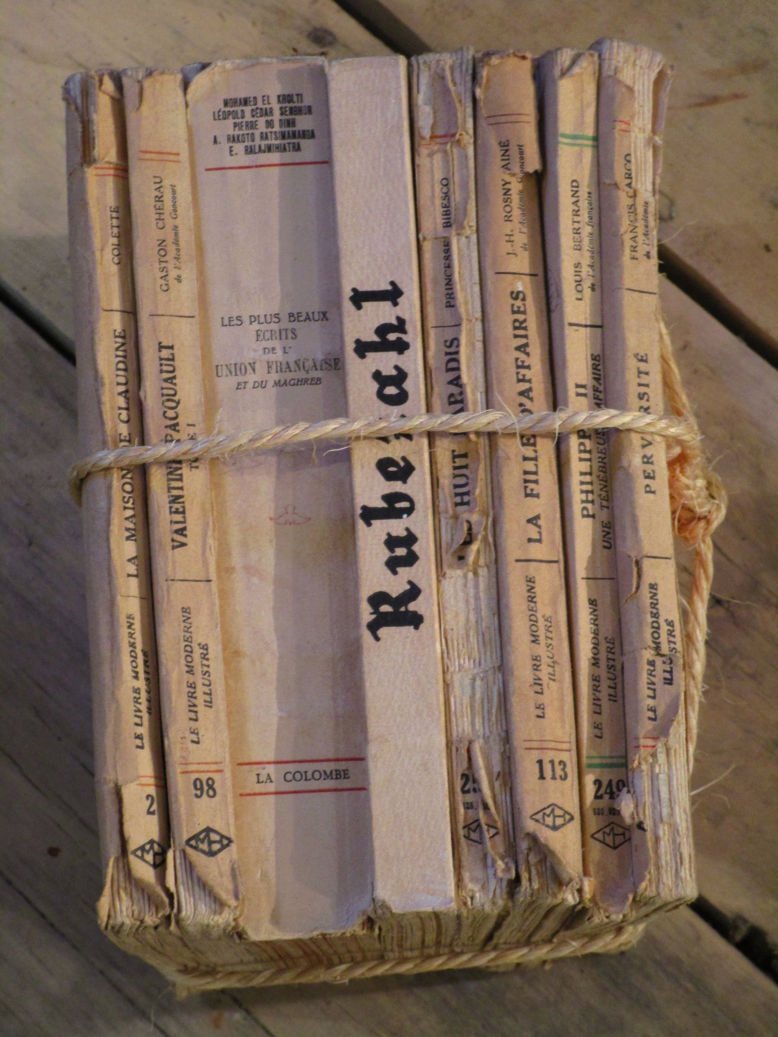 Spine - Collection French vintage books with string farmhouse
