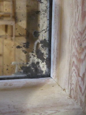 Detail 19th century French bistro mirror rectangular rustic farmhouse