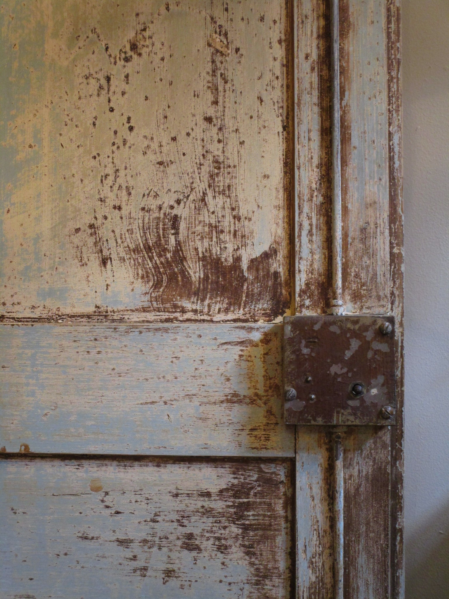 Detail - Pair of Louis XVI French doors with original paint and hardware