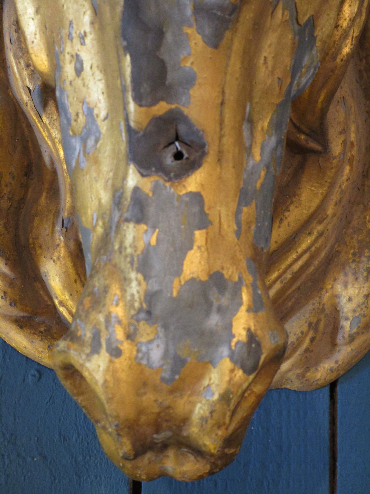 nose detail gold zinc french horse head butcher mount