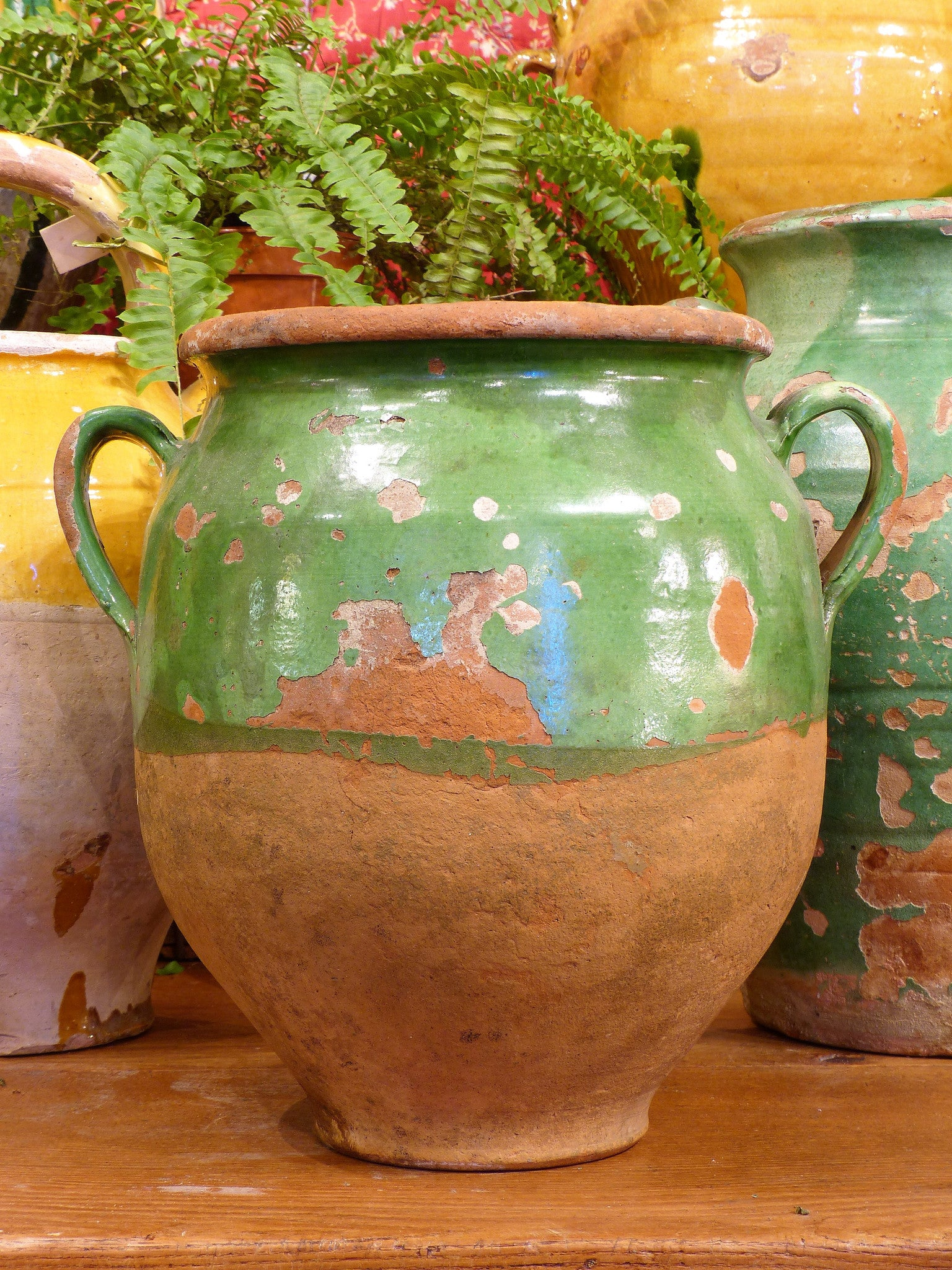 "Late 19th century green confit pot - 12¼""?"