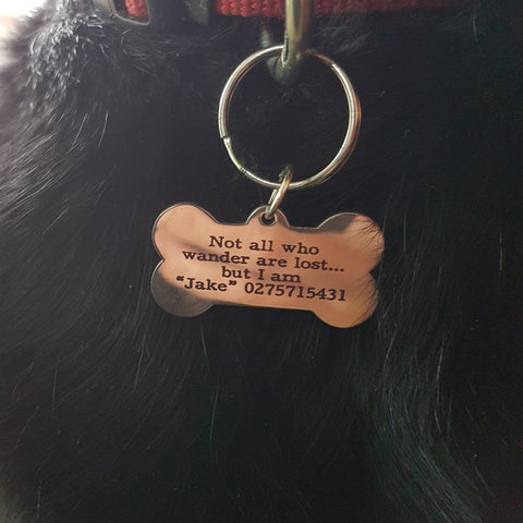 Large Pet Tag