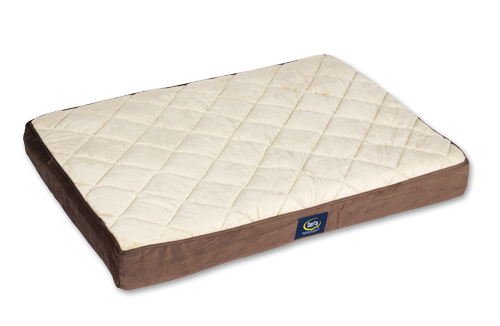 Serta Memory Foam Dog Bed VS DreamCastle Natural Dog Bed Review Comparison