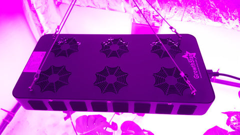 Growthstar Spider 6X MCOB LED Grow Light