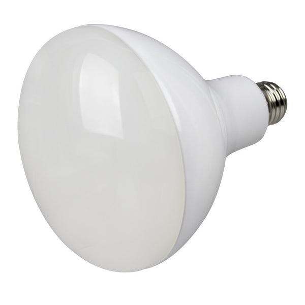 BR40 LED Directional Flood Bulb - 18.5 Watt - 5000K - 1650lm - ER40-1050E