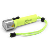 LED Lenser D14.2 Diving Torch