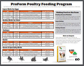 Poultry Feed & Treats — Critter Country Supply Ltd