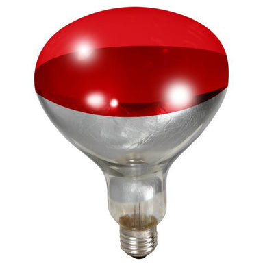 Little Giant® 250 Watt Red Bulb For Brooder Lamp - Critter Country Supply Ltd.