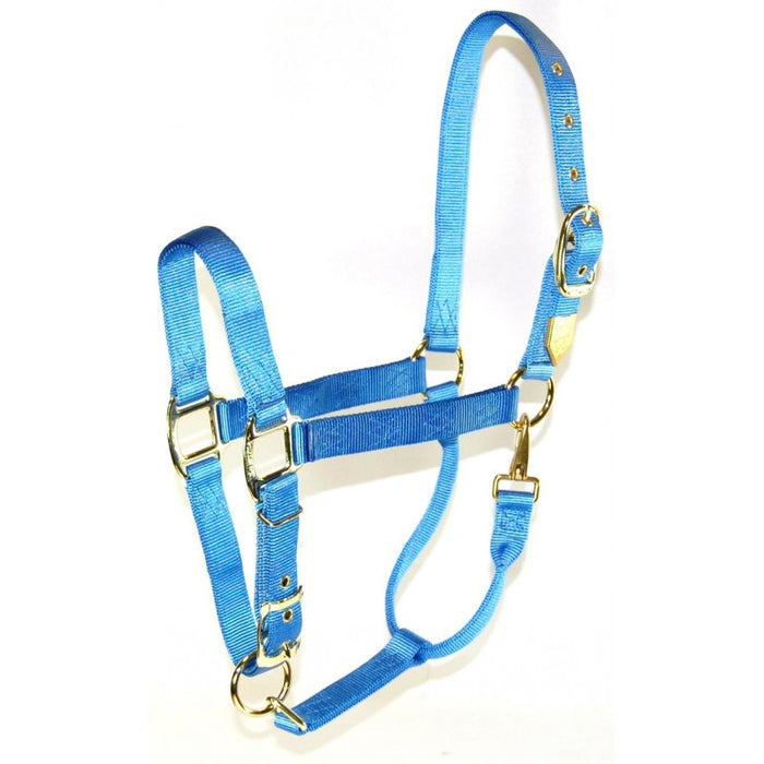 "Hamilton® 1"" Deluxe Halter (Adjustable Chin/Snap at Throat) - Critter Country Supply Ltd."