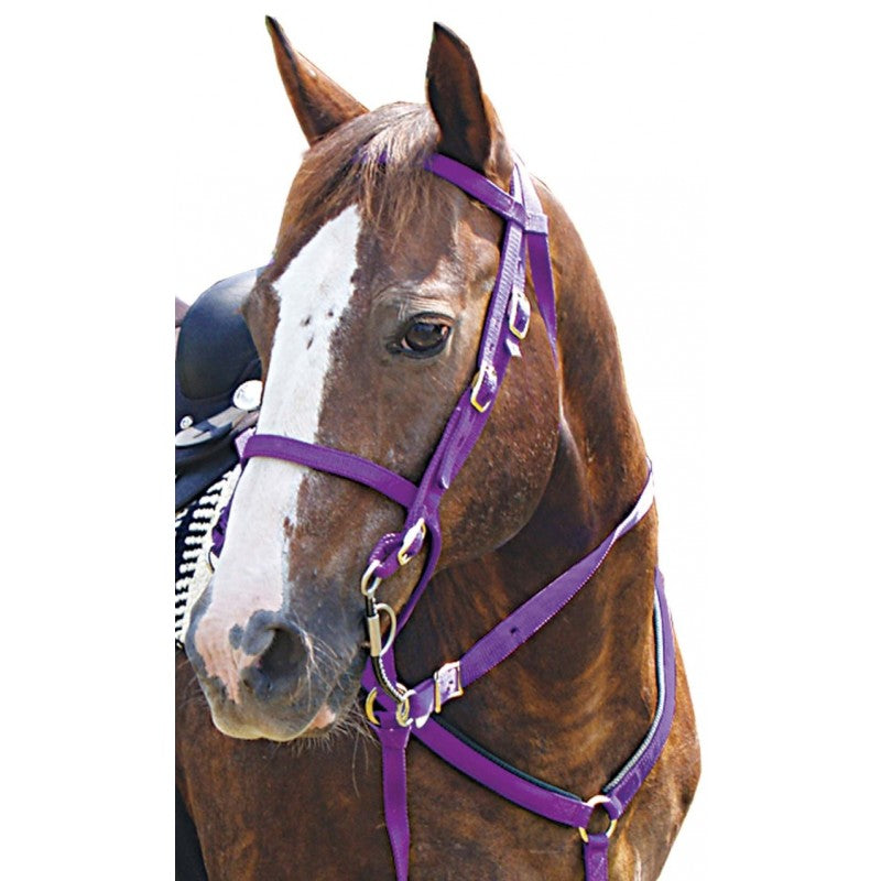 Mustang® Bridle and Go Tack Set (5 Piece)
