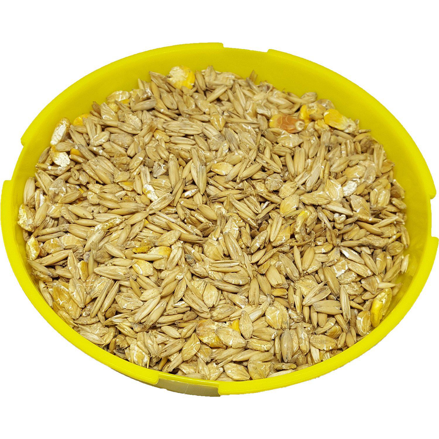 Shur-Gain® Oats 58%/Barley 30%/Corn 10%/Molasses 2% - 20 KG Bag - Critter Country Supply Ltd.