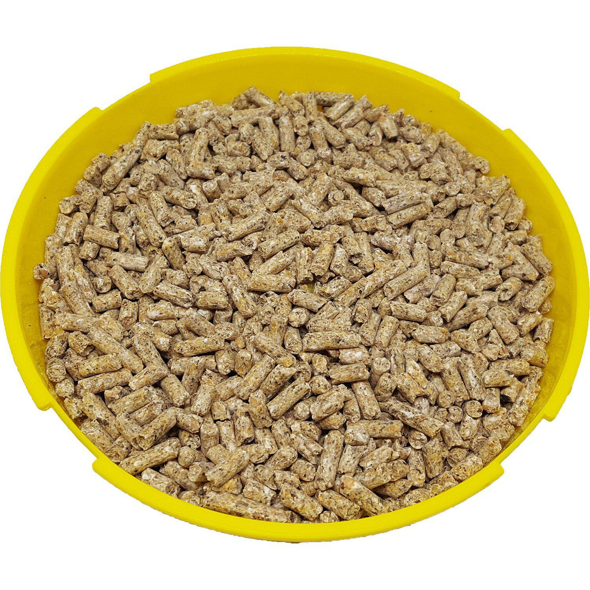 Shur-Gain® Homestead 20% Turkey Grower Ration Pellets 25 KG Bag - Critter Country Supply Ltd.