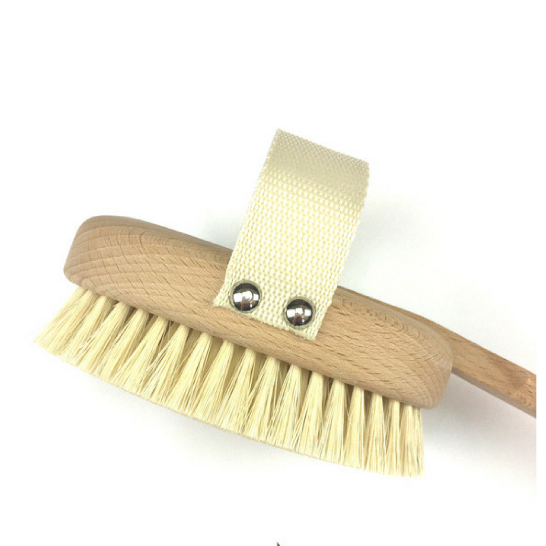 Bodecare Long handle dry body brush
