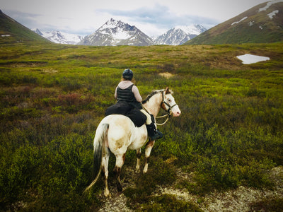 Backcountry horse trip into the Clearwater Mountains of Alaska