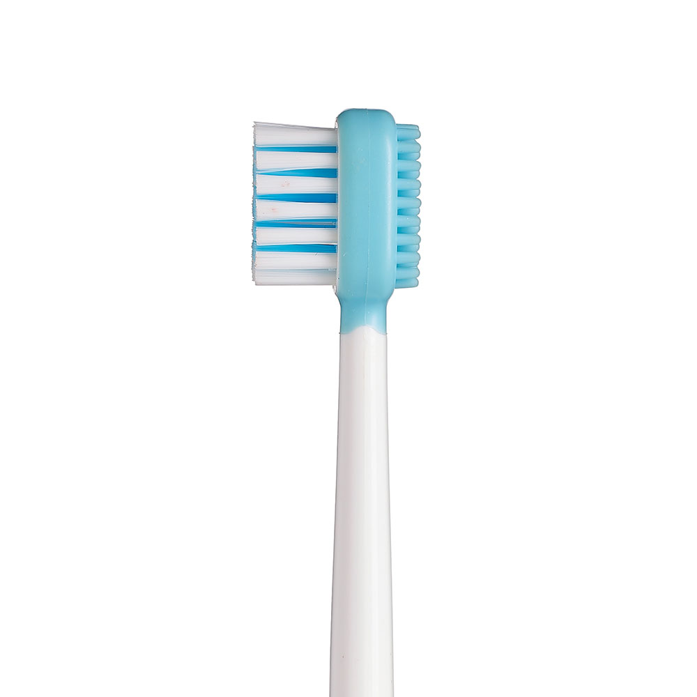 Single-Headed Toothbrush