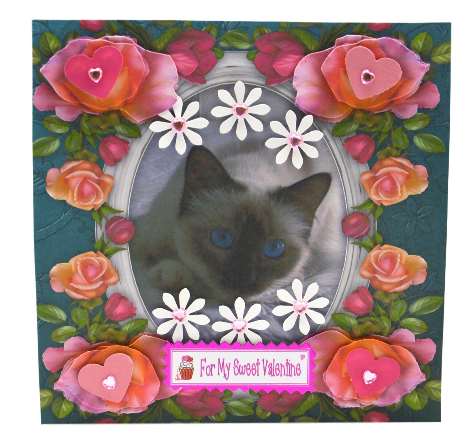 Birman Cat Valentine Card