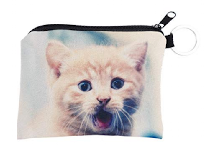 Ginger Kitten Cat Small Coin Purse