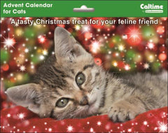 Grey Kitten Christmas Advent Calendar