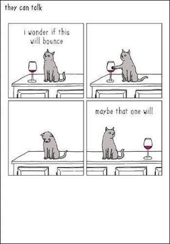 Will it Bounce? Cat Greeting Card
