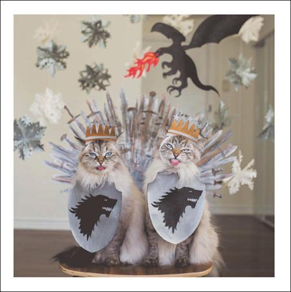 Cats of Thrones Cat Greeting Card