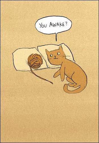Awake Cat Greeting Card