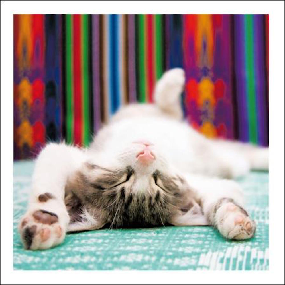 Tough Day Cat Greeting Card