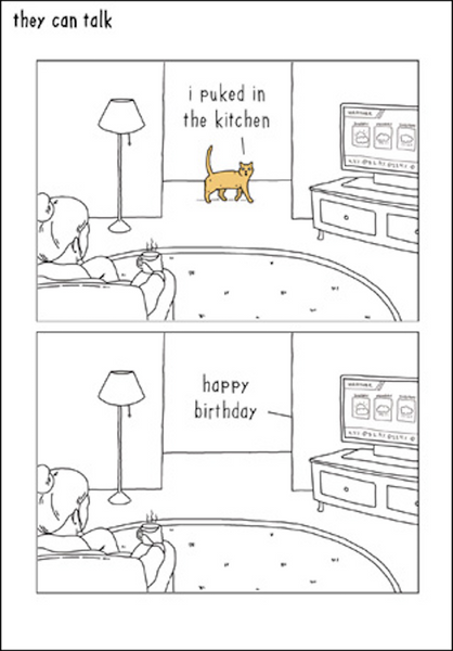 I Puked in the Kitchen Cat Greeting Birthday Card