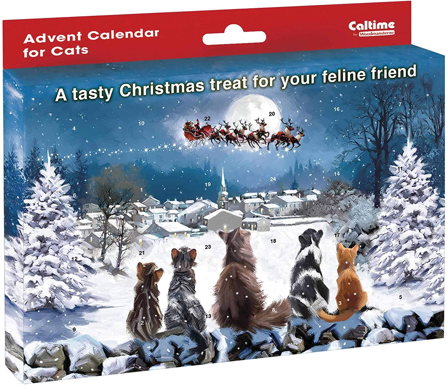 Waiting for Father Christmas Cat Advent Calendar