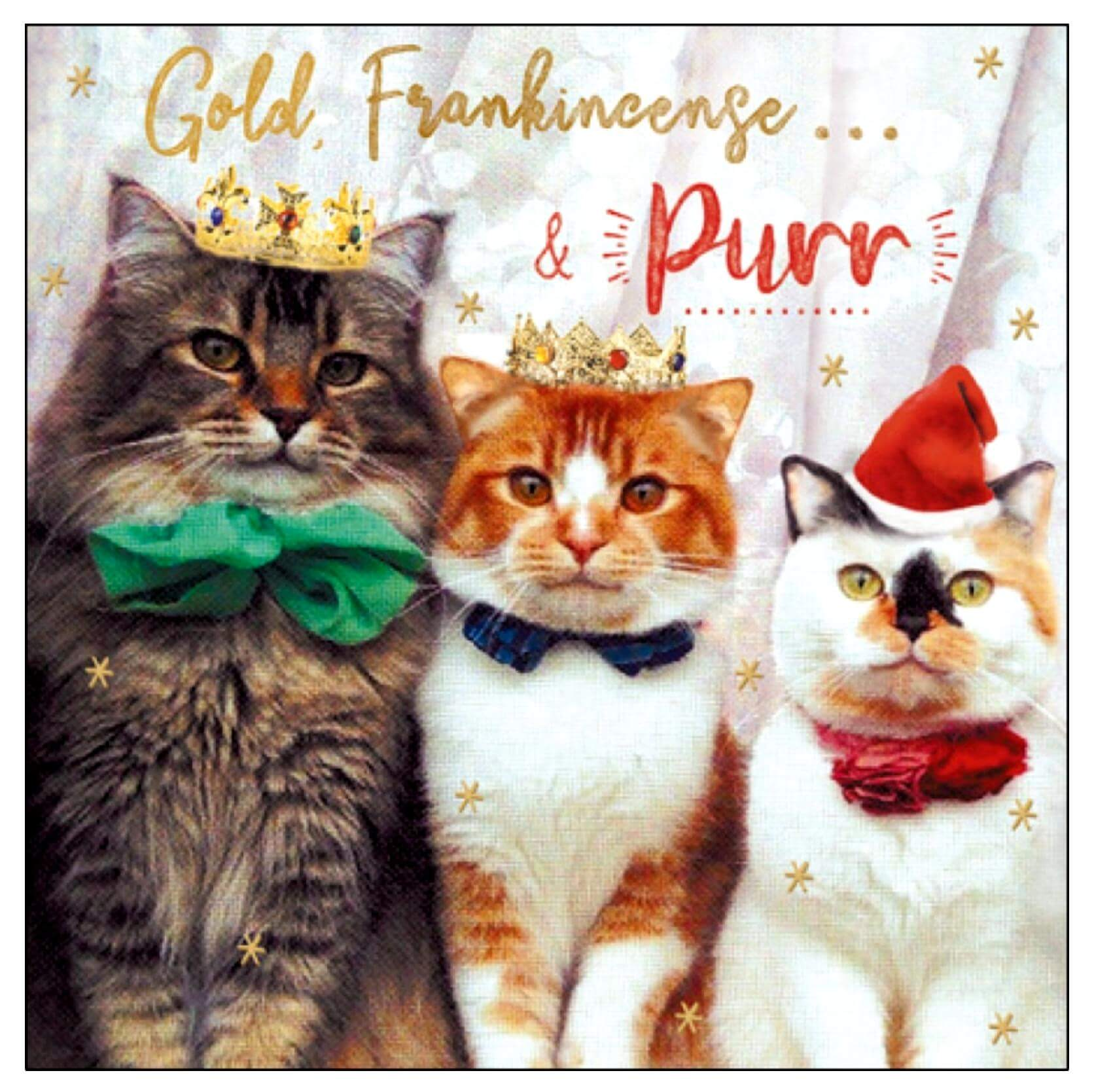 Gold, Frankincense and Purr Cat Christmas Card
