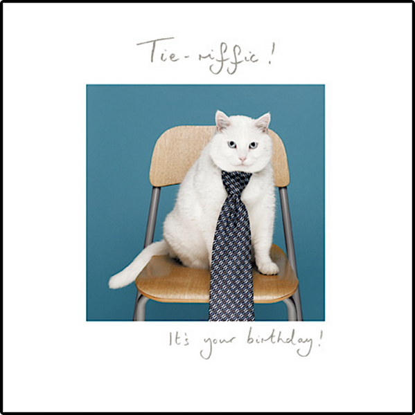 Tie-rific Cat Birthday Card