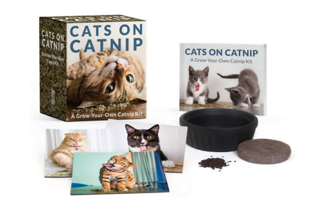 Grow Your Own Catnip Bundle
