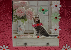 Cat in the Window Valentine Card