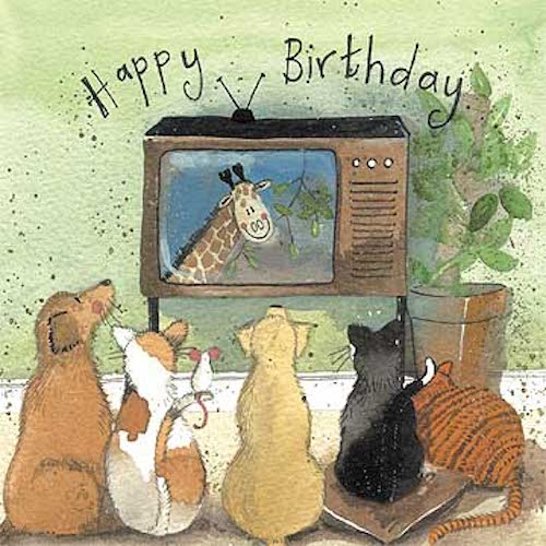 Square Eyes Cats & Dogs Birthday Card
