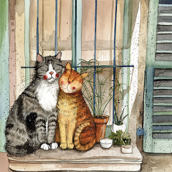 Provence Cats Greetings Card
