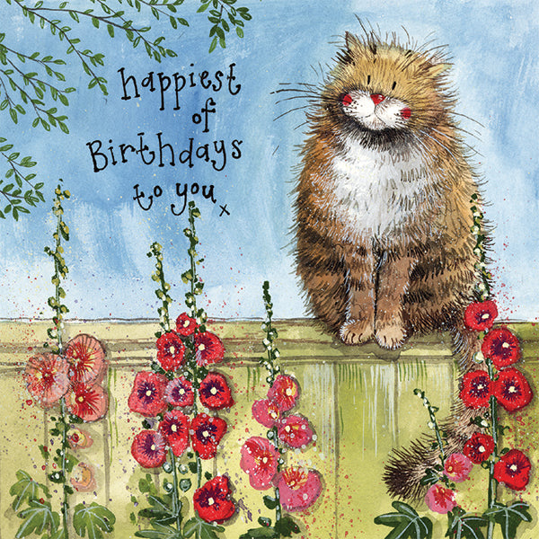 Garden Fence Cat Birthday Greetings Card