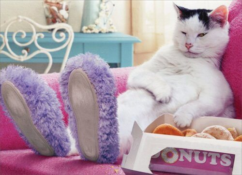 Donuts Funny Cat Birthday Card