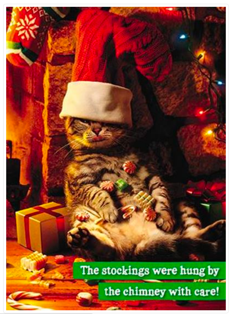 Cat with Stocking Head Greeting Christmas Card