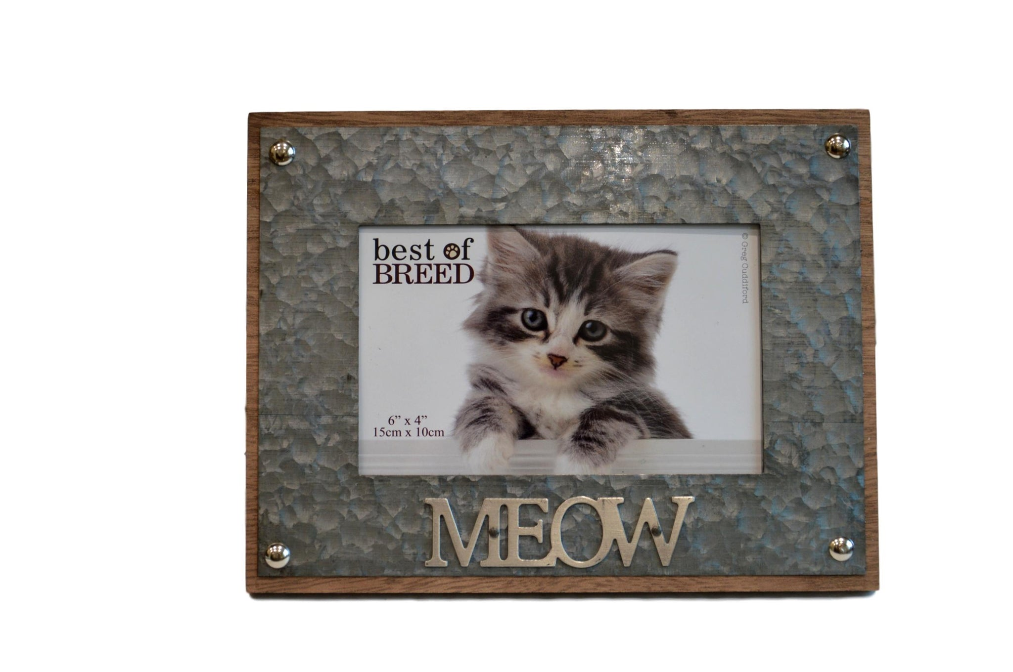 """6/"""" X 4/"""" PHOTO /""""MEOW/"""" CAT POLISHED SILVER METAL PHOTO PICTURE FRAME WITH STAND"""