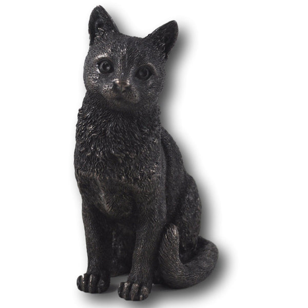 Russian Blue Front