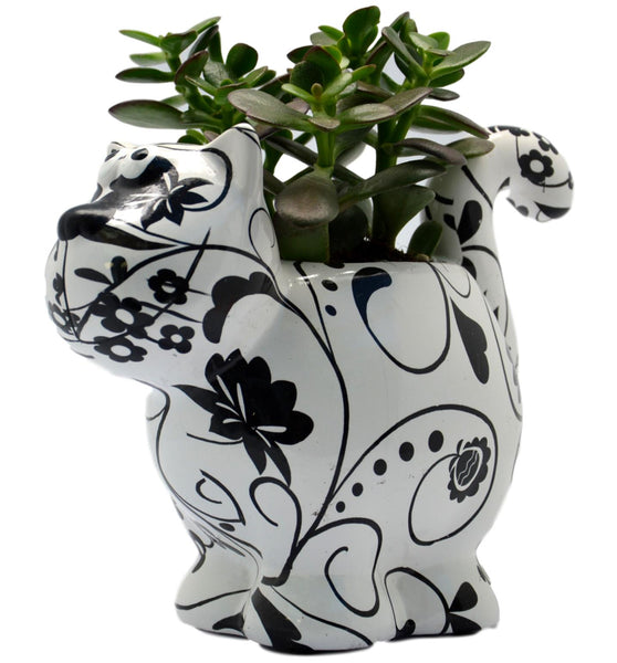 "Black & White Ceramic Pomme Pidou ""Dorothy Bloomer"" Cat Planter"
