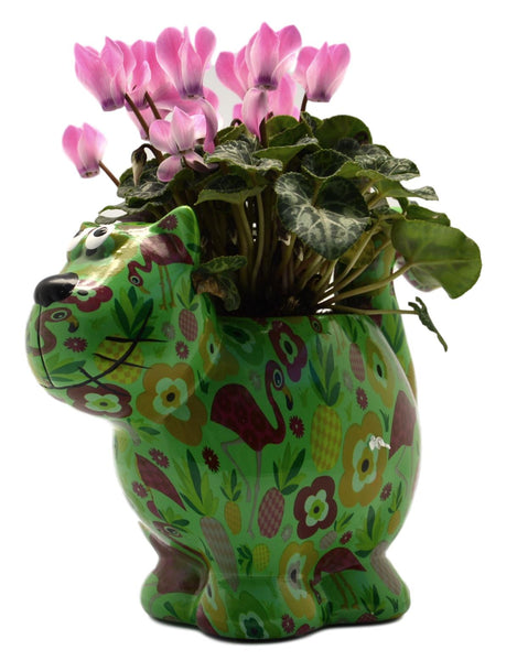 "Green Ceramic Pomme Pidou ""Dorothy Bloomer"" Cat Planter"