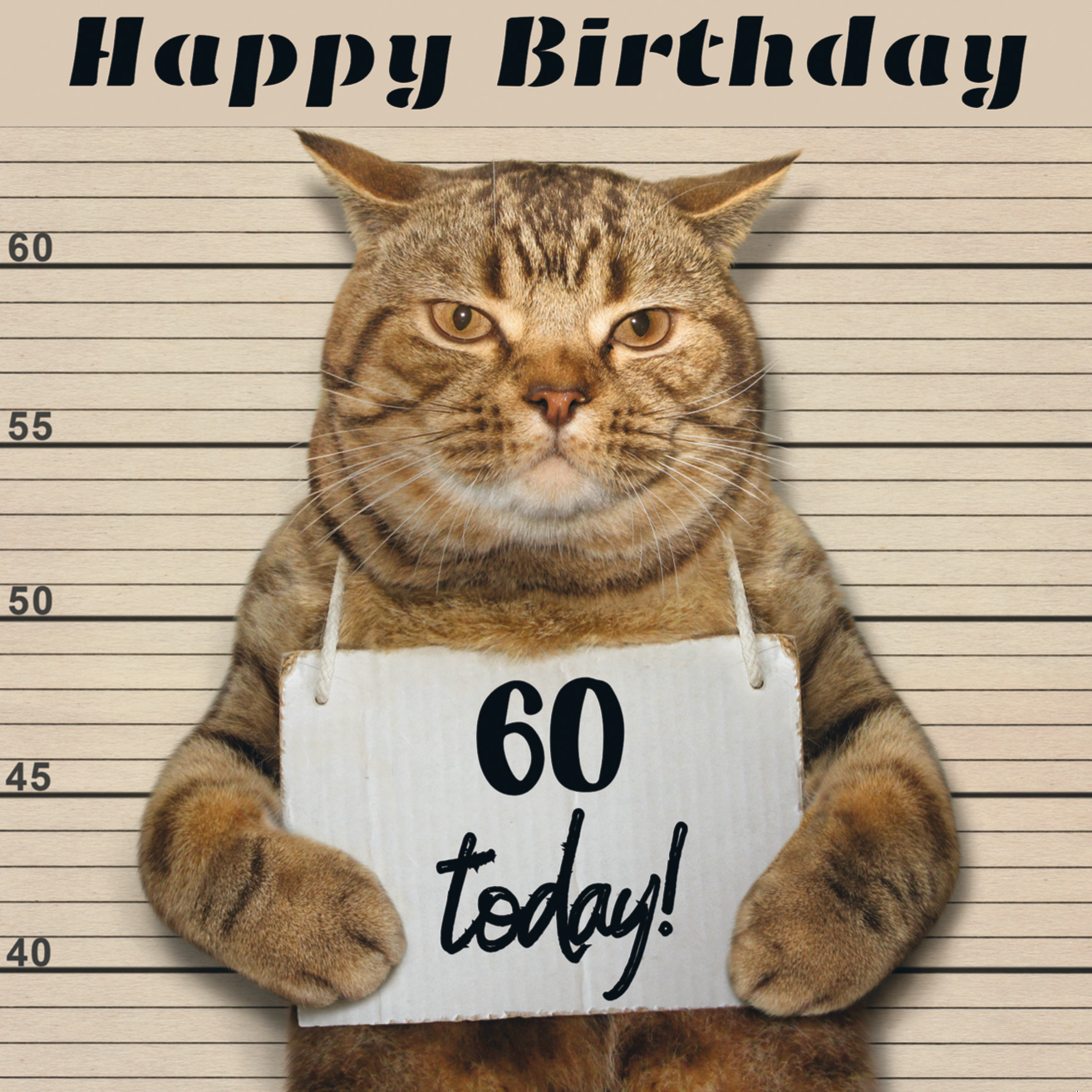 Moggie Mugshot 60th Birthday Card