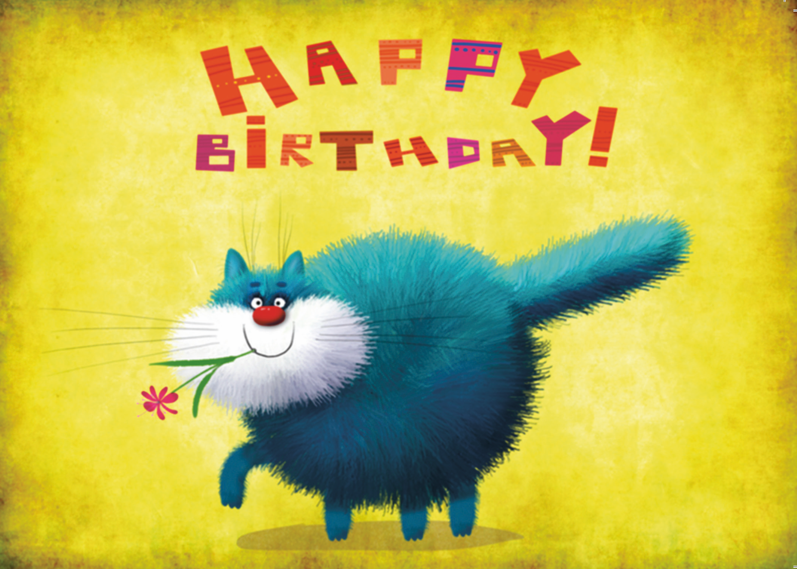 Bluebell Cat Birthday Greeting Card (FF9779)