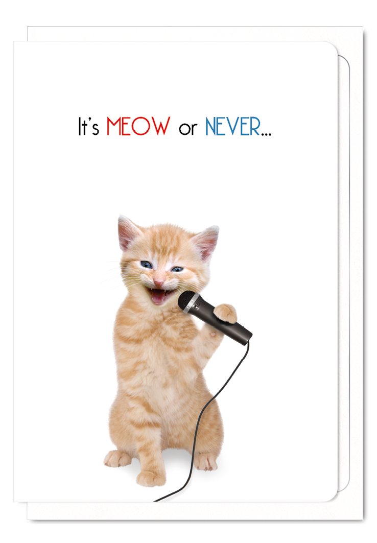 'It's Meow or Never' Cat Greeting Card