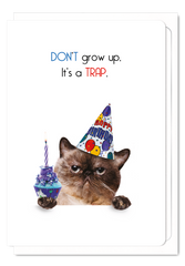 'It's a Trap' Cat Greeting Card