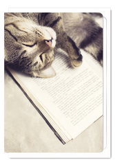 'Cat and Book' Cat Greeting Card