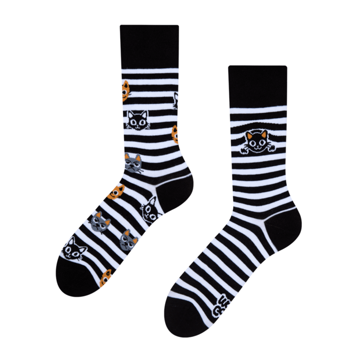 Cats & Stripes Black & White Regular Odd Socks