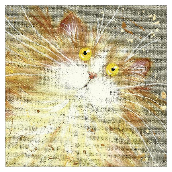 'Custard' Cat Greeting Card