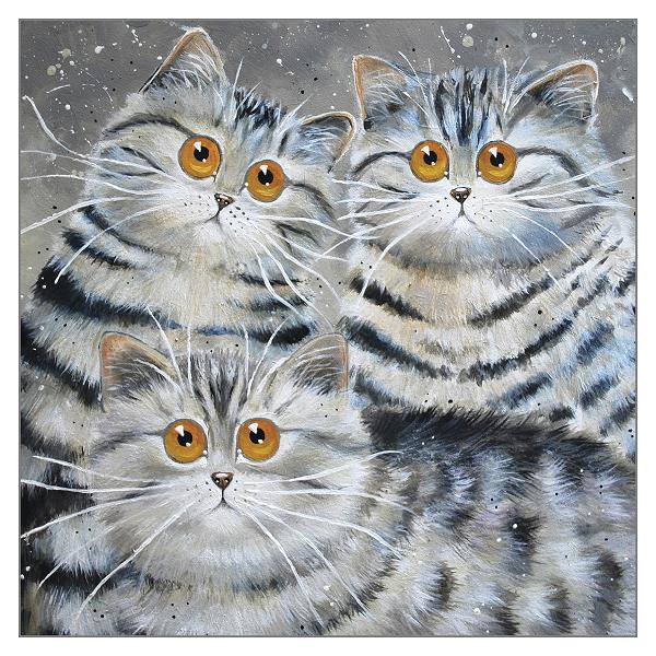 'Saphy, Oakley & Oscar' Blank Cat Greeting Card by Kim Haskins